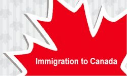 Updated Selection Point's Score to Apply for Canada Permanent Residence